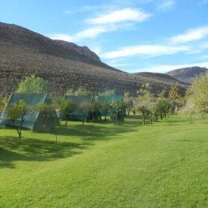 Cederberg Oasis