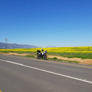 Enroute to Piketberg
