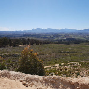 Highlands Rd - Elgin Valley
