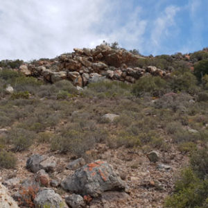 Hike up the hill behind Warmwaterberg Spa